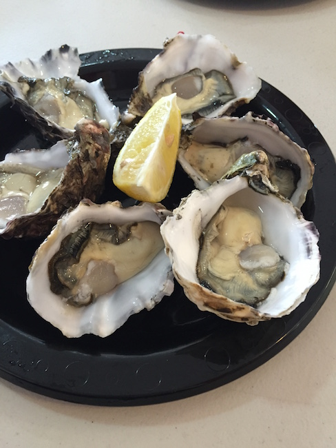 oyster_swansea
